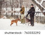 two hunters with rifles in a...   Shutterstock . vector #763332292