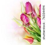 spring tulip flowers border... | Shutterstock . vector #76334494