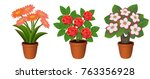flowers in pot  potted plants ... | Shutterstock .eps vector #763356928