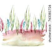 watercolor drawing of seaweed ... | Shutterstock . vector #763381726