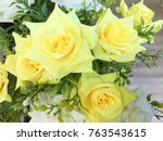 artificial yellow and white... | Shutterstock . vector #763543615