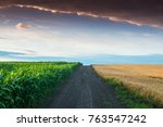 Small photo of Landscape with a corn and wheat field. The field is divided in half by a dirt road. Dirt road between Corn and Wheat Fields.