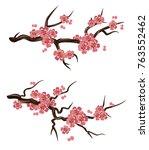 flowering sakura branches | Shutterstock .eps vector #763552462