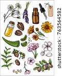 natural cosmetics and medicine. ... | Shutterstock .eps vector #763564582