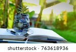 plant growing in jar with coins ... | Shutterstock . vector #763618936