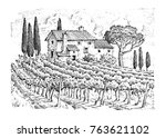 rustic vineyard. rural... | Shutterstock . vector #763621102