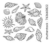 hand drawn set of seashells.... | Shutterstock .eps vector #763660822