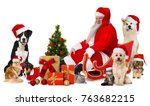Stock photo santa claus with pets 763682215
