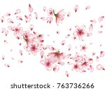 blossom flowers  buds and...   Shutterstock .eps vector #763736266