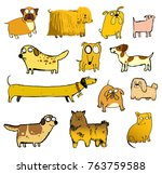 13 yellow dogs. funny dogs  ... | Shutterstock .eps vector #763759588