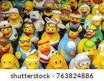 lauf an der pegnitz  bavaria ... | Shutterstock . vector #763824886