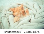 Stock photo little red kitten the kitten lies on the fluffy carpet at home little kitten sleeps close up of 763831876