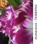 thai orchids in fresh flowers... | Shutterstock . vector #763883962
