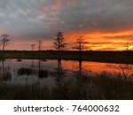 stunning sunset in the swamps... | Shutterstock . vector #764000632