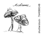 ink drawn mushrooms for... | Shutterstock .eps vector #764088148