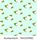 white arabian jasmine on green... | Shutterstock .eps vector #764145982