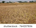 rural india agriculture land... | Shutterstock . vector #764207836