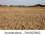 rural india agriculture land... | Shutterstock . vector #764207842