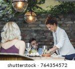 pretty caucasian smiling woman...   Shutterstock . vector #764354572