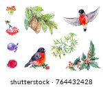 winter decoration elemets.... | Shutterstock . vector #764432428