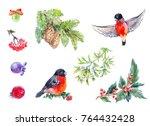 winter decoration elemets.... | Shutterstock . vector #764432428