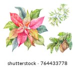 set of cristmas plants.... | Shutterstock . vector #764433778