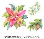 set of cristmas plants.... | Shutterstock . vector #764433778