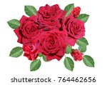 bouquet of red rose flowers | Shutterstock . vector #764462656