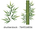 bamboo and leaf | Shutterstock .eps vector #764516836