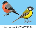 Pixelated titmouse and bullfinch isolated on a blue background. | Shutterstock vector #764579956