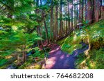 Small photo of Hiking along the Pacific Crest Trail in Mt. Hood National Forest near Ramona Falls and the head of the Sandy River, in Oregon