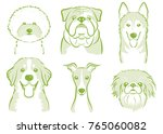 Dog's Face Illustration