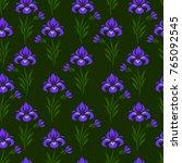 flat ornamental vector seamless ... | Shutterstock .eps vector #765092545