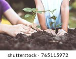 child and parent hand planting... | Shutterstock . vector #765115972