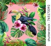 tropical birds tropical... | Shutterstock . vector #765173392