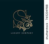 vector graphic elegant logotype ... | Shutterstock .eps vector #765204988