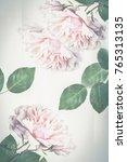 beautiful  light pink roses in... | Shutterstock . vector #765313135