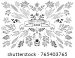 bloom collection. set of hand ... | Shutterstock .eps vector #765403765