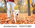 Stock photo young man walking his dog in park 765471385