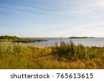 a bright summer sunny landscape ... | Shutterstock . vector #765613615