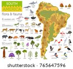 South America Flora And Fauna...