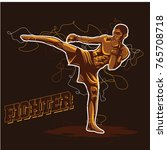 fighter logo vector | Shutterstock .eps vector #765708718