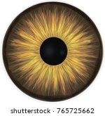 werewolf eye iris   vector | Shutterstock .eps vector #765725662