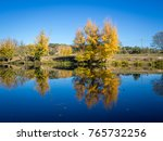 colorful autumn on calm river... | Shutterstock . vector #765732256