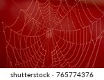 red spider web with waterdrops | Shutterstock . vector #765774376