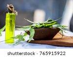 azadirachta indica neem with... | Shutterstock . vector #765915922