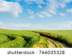 a bright path separates two... | Shutterstock . vector #766035328