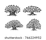 huge and sacred oak tree... | Shutterstock .eps vector #766224952