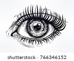 beautiful realistic eye of a... | Shutterstock .eps vector #766346152