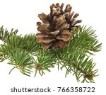 branch of christmas tree and... | Shutterstock . vector #766358722